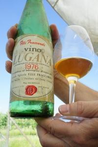 Самое старое вино, которое мы пили, было Fraccaroli 1976 года, и оно было абсолютно живым и прекрасным